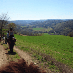 The Ranch of Carlotta – Equitourism