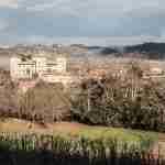 Camugliano's Estate