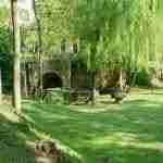 Mills' path