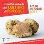 35° MOSTRA MERCATO TARTUFO FORCOLI